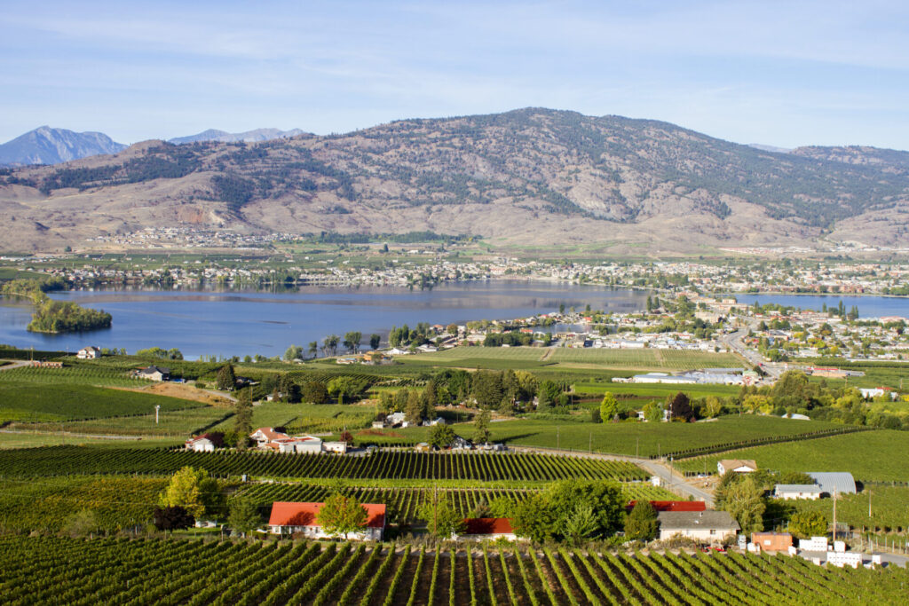 Read more on Staycation in Osoyoos