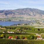 Staycation in Osoyoos